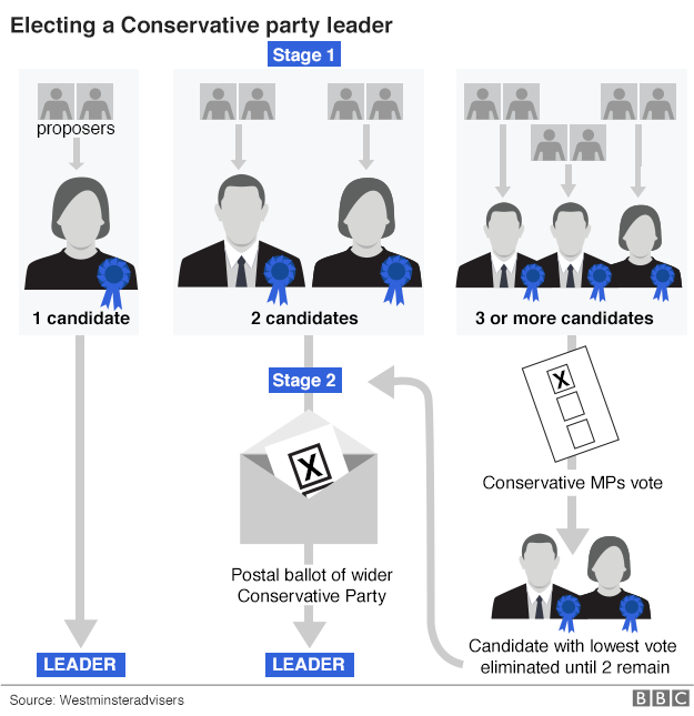 Electing a Conservative leader