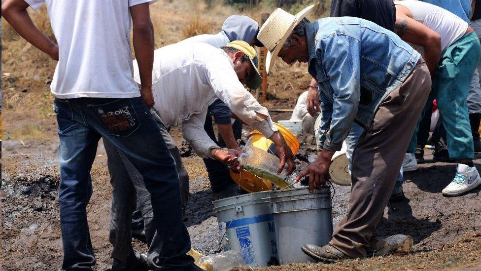 Personas toman combustible de un ducto perforado