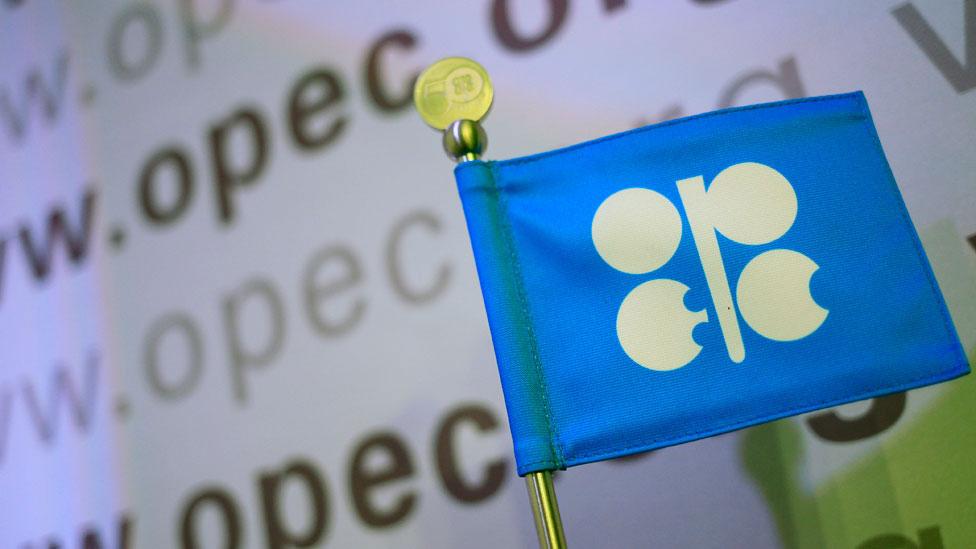 Bandera con logo de la OPEC