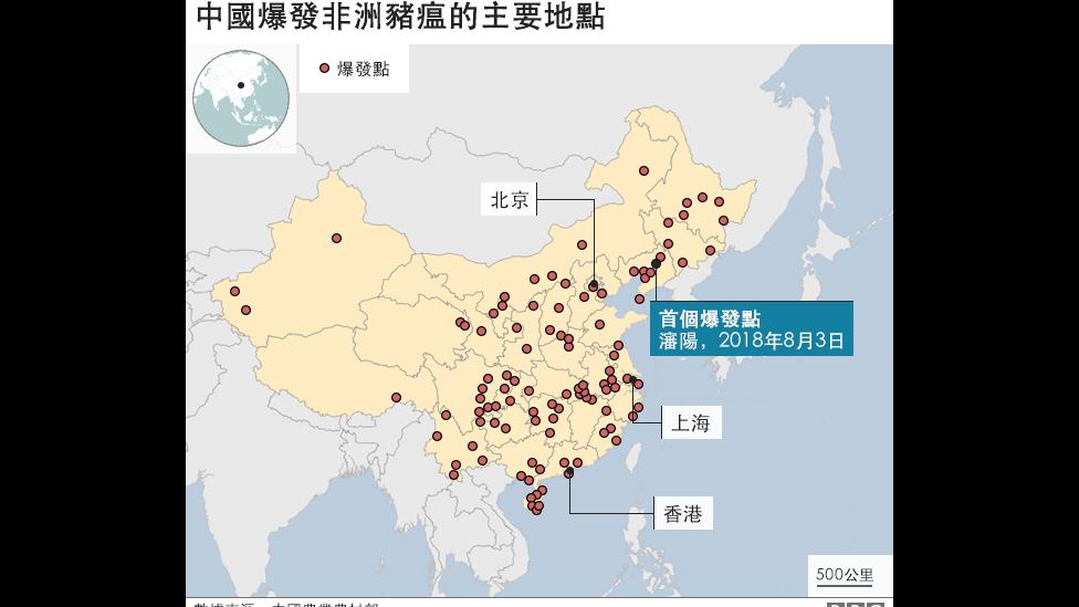 非洲豬瘟在中國的爆發