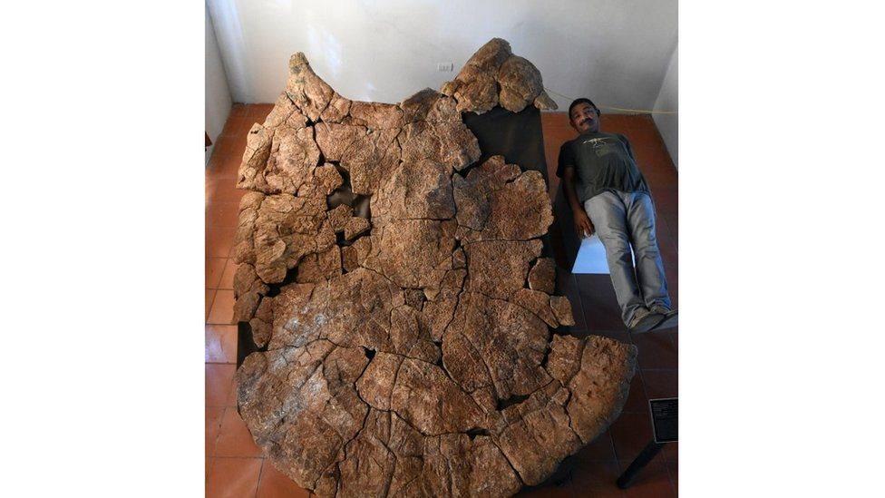 رجل يتمدد إلى جوار الحفرية