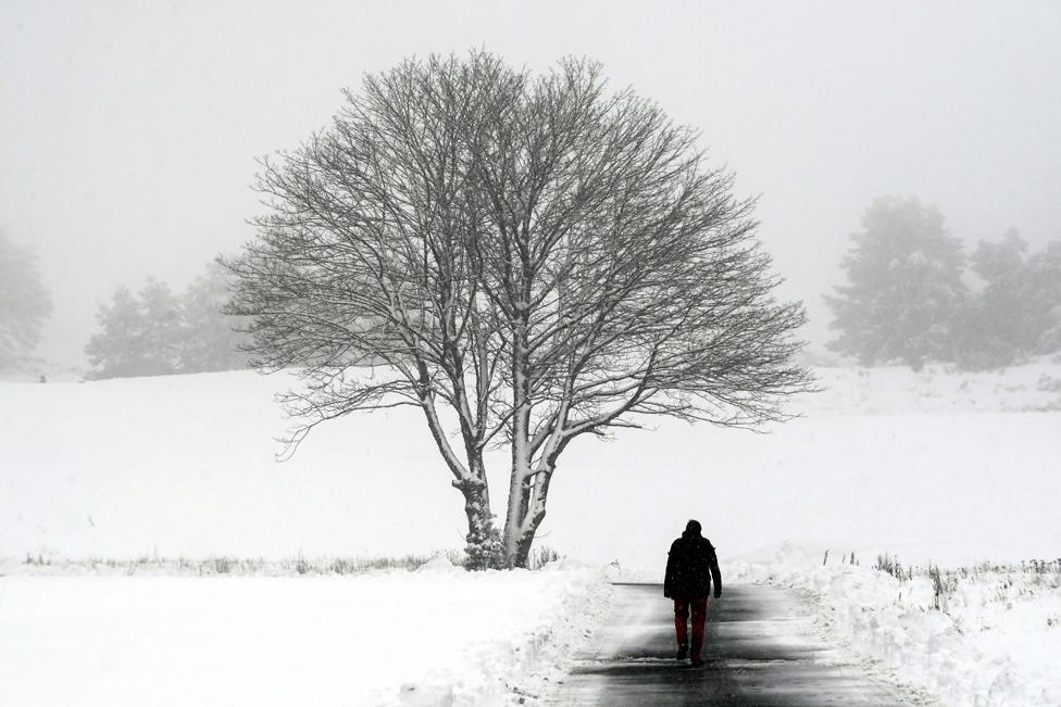 • رجل يتجول في مضمار غلينيعلز للغولف،