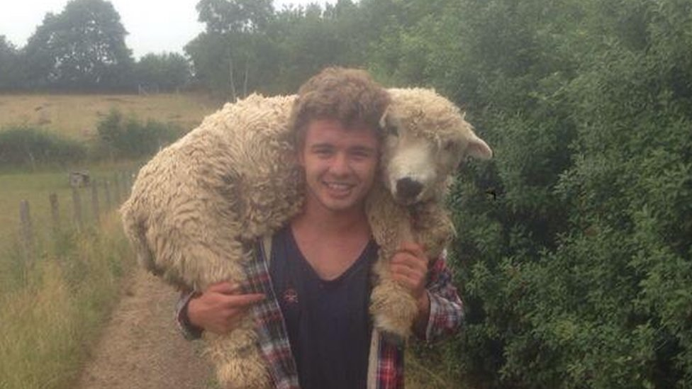 Lewis with one of his earliest sheep