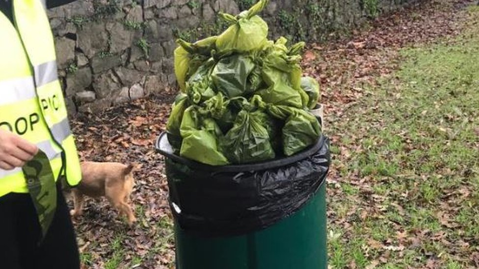 Dog poo in Weston-super-Mare tackled by fed-up park users