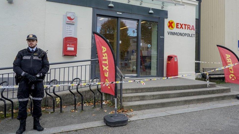 Нападение в норвежском Конгсберге: люди погибли от колющего оружия, а не от лука и стрел