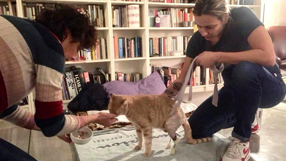 Silvija Gotardi (desno) i Linda Ronconi sa Vitom nedugo pre nesreće