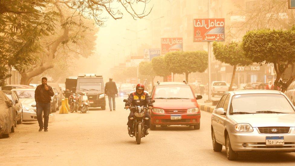 Avenida en El Cairo