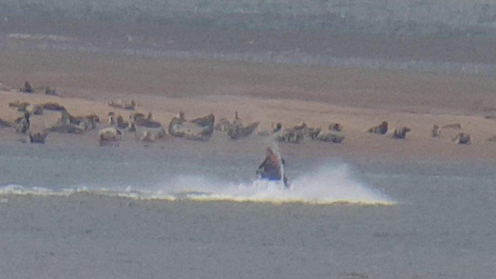 Police investigate jet ski 'seal scarers' in Lincolnshire