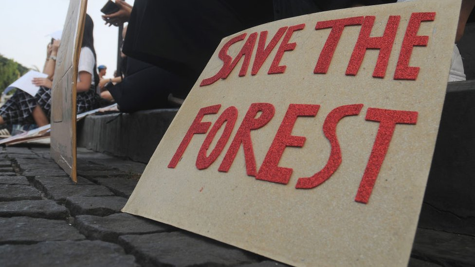 Protest against deforestation in Jakarta