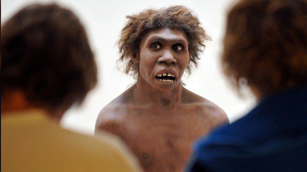 Reconstrucción del cuerpo de un neandertal