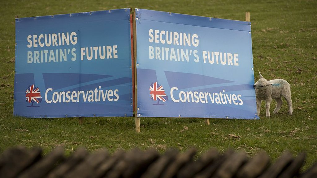 Brexit: Are Tory grassroots members 'taking back control'?