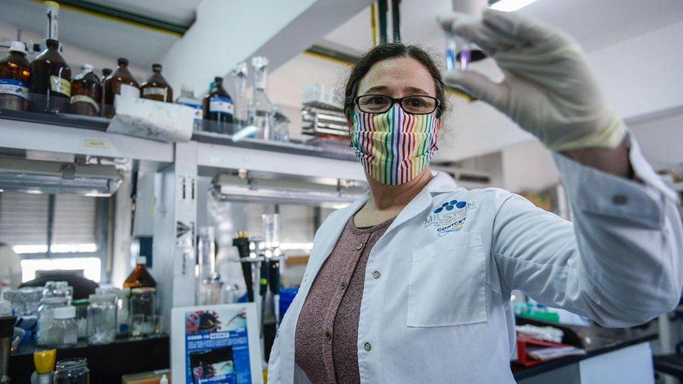 La Dra Carolina Carrillo en el laboratorio.