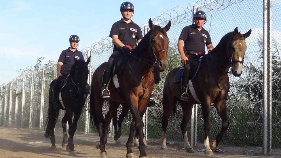 Hungarian mounted police