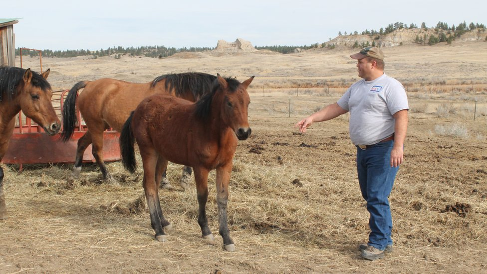 Bret Bowen works with his horses in Colstrip, Montana