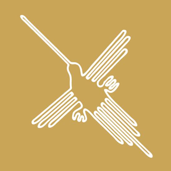 Ilustración de un ave de Nasca