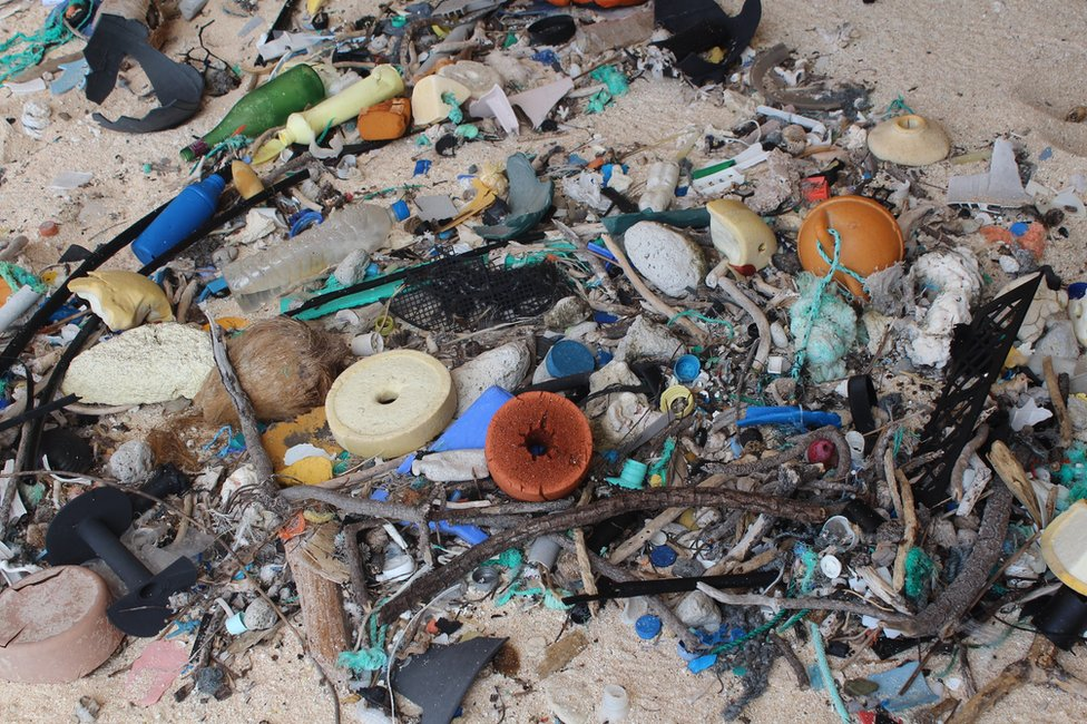A close-up image of rubbish found on Henderson Island.