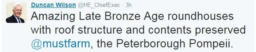 'Amazing Late Bronze Age roundhouses with roof structure and contents preserved, the Peterborough Pompeii'