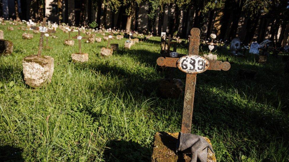 kuburan janin