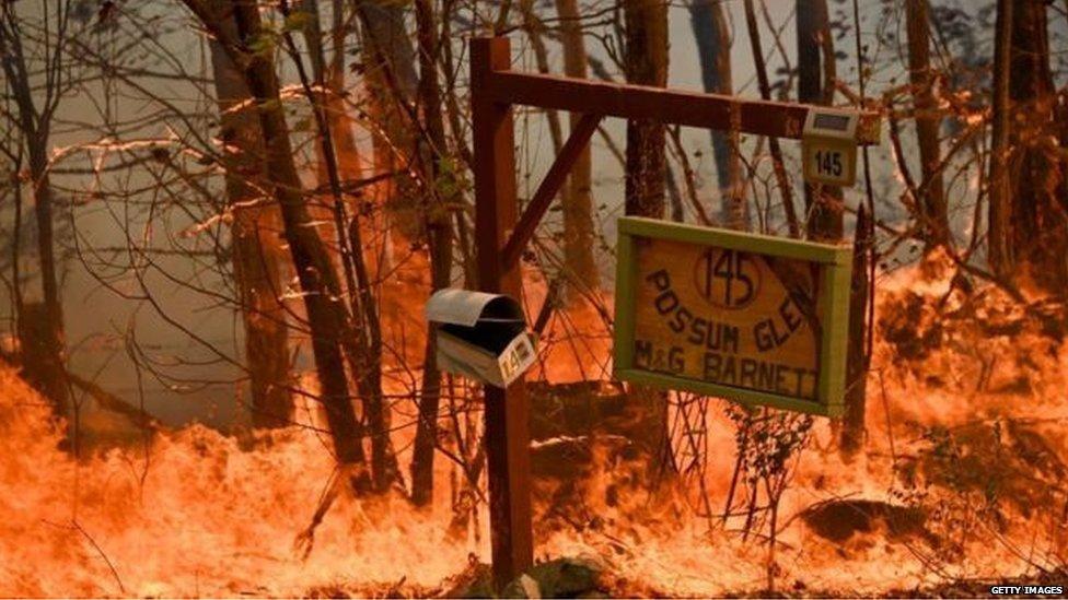 ऑस्ट्रेलिया में लगी भयानक आग