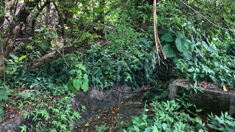 El punto en la carretera donde hallaron el cuerpo de Karla Turcios.