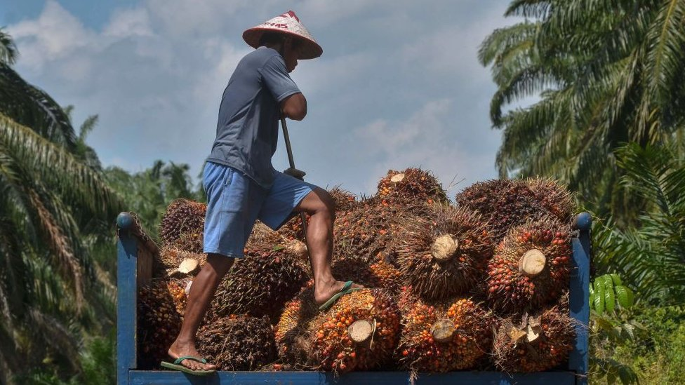 The palm oil industry has been unexpectedly dragged into tensions over Kashmir