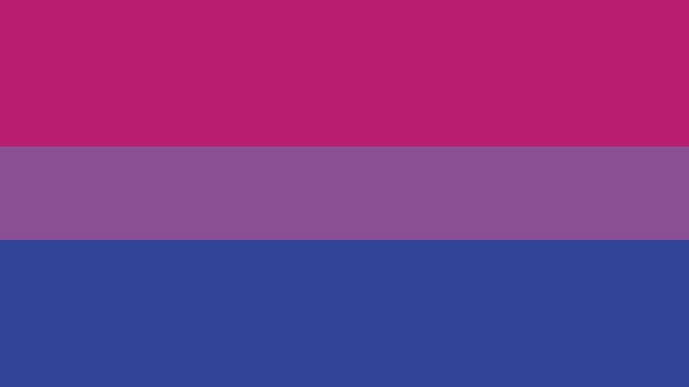 Image of the bisexual pride flag with three horizontal stripes of pink, purple and blue