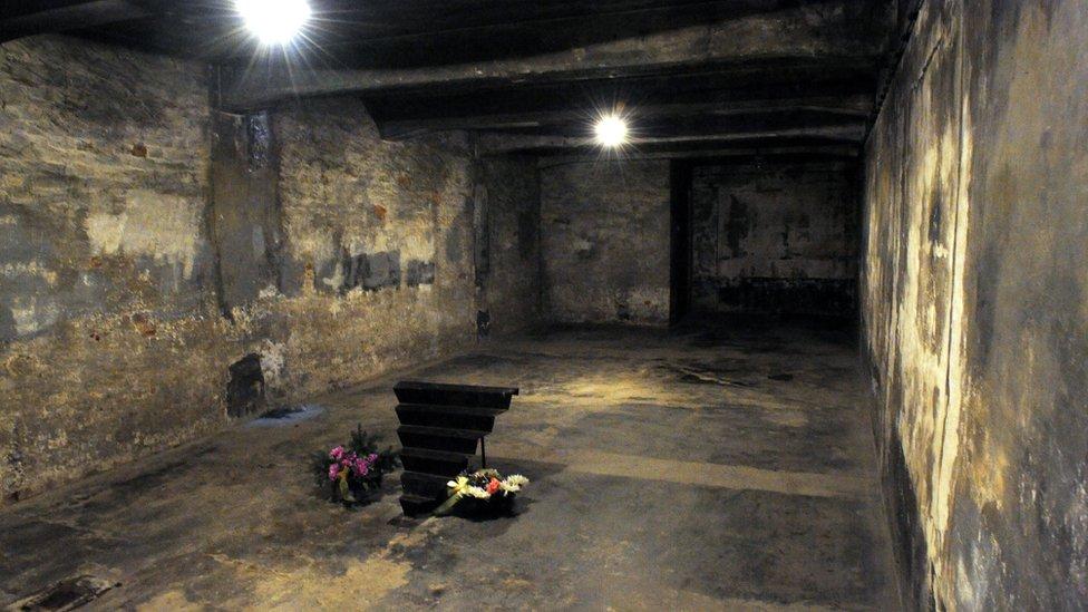 Una cámara en Auschwitz