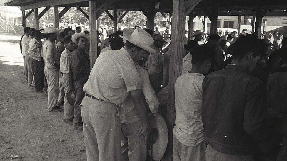 Los braceros eran inspeccionados de la cabeza a los pies en un centro de procesamiento en Hidalgo, Texas.