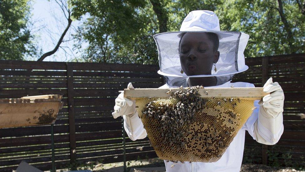 Mikaila le tenía miedo a las abejas y ahora dona 10% de sus ganancias para su conservación.