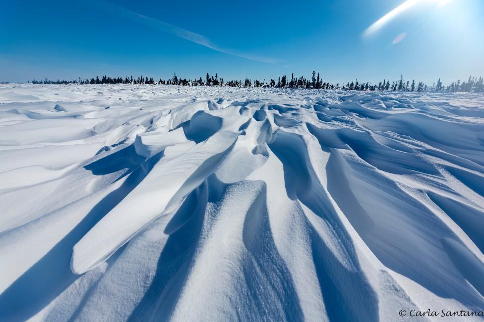 Vasto espacio de hielo en la tundra canadiense