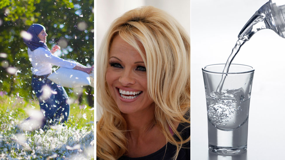 woman in pillow fight, vodka shot and Pamela Anderson