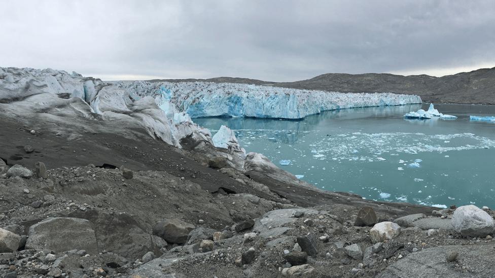 Las algas en hielo de Groenlandia
