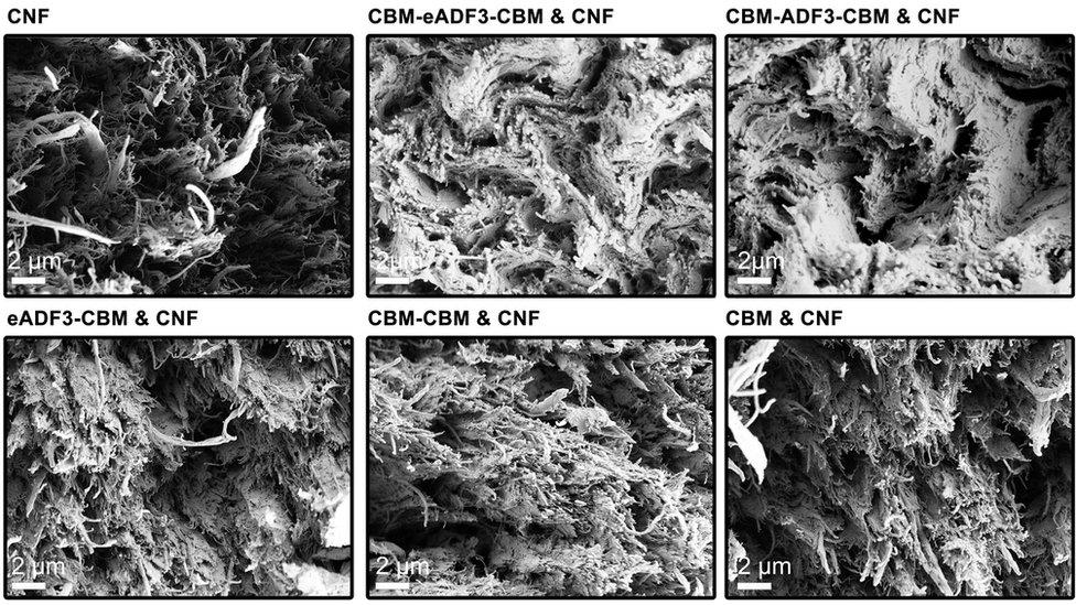 Imágenes microscópicas de material