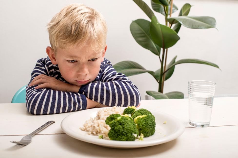Niño rechaza plato con verduras