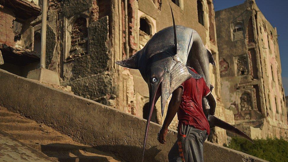 Fisherman brings home the catch in Mogadishu's historic port city.