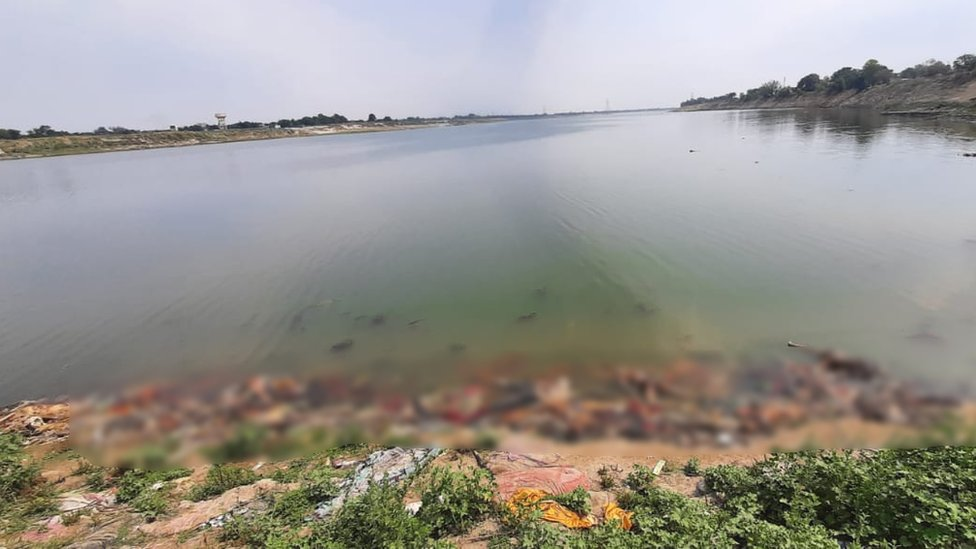 Blurred image of bodies floating in the Ganges and piling up on the river bank