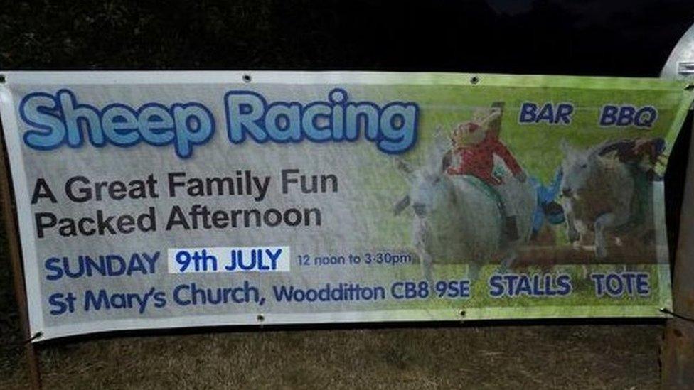 Sheep racing advertising