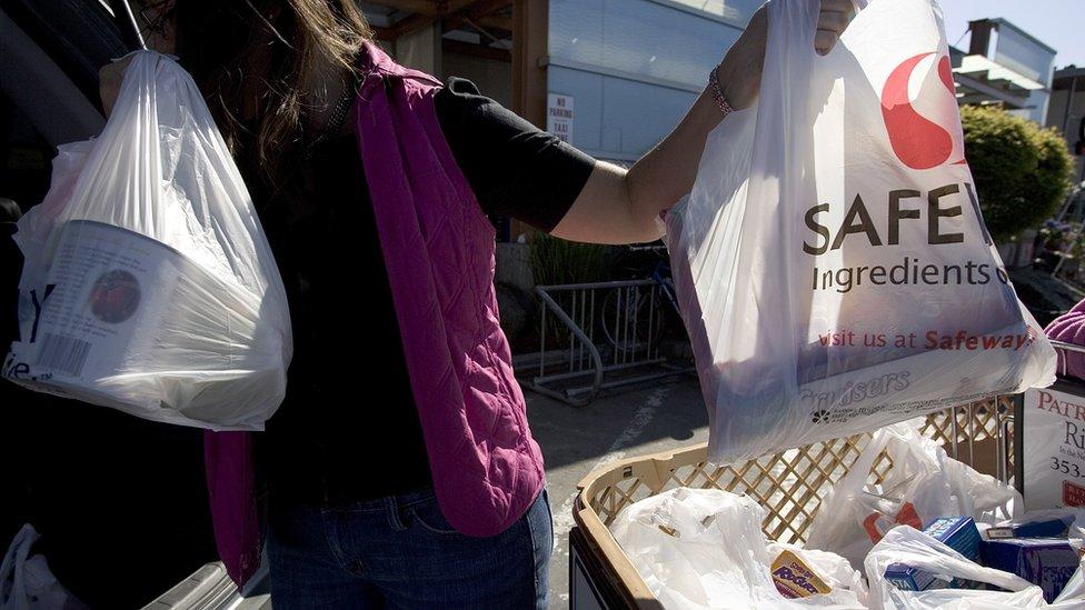 Una persona sostiene bolsas de plástico