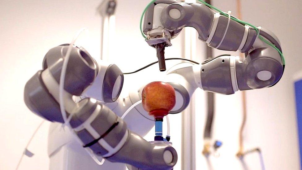 robotso steniendo una manzana.