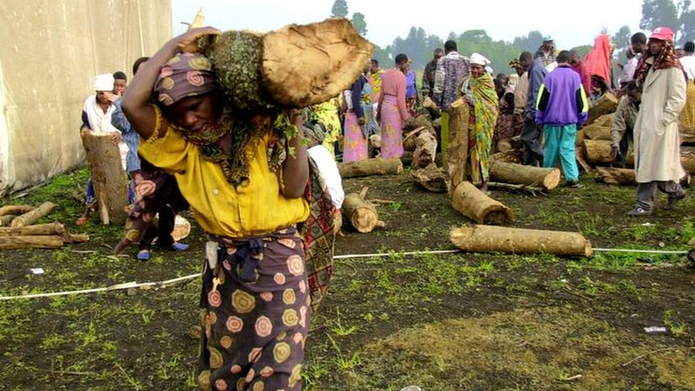 Woman carrying wood (Image: AP)