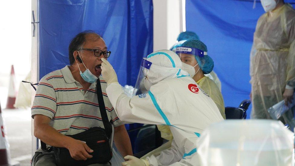 香港政府早前推出計劃,為老人、計程車司機等多個高風險群體進行新型肺炎病毒檢測。