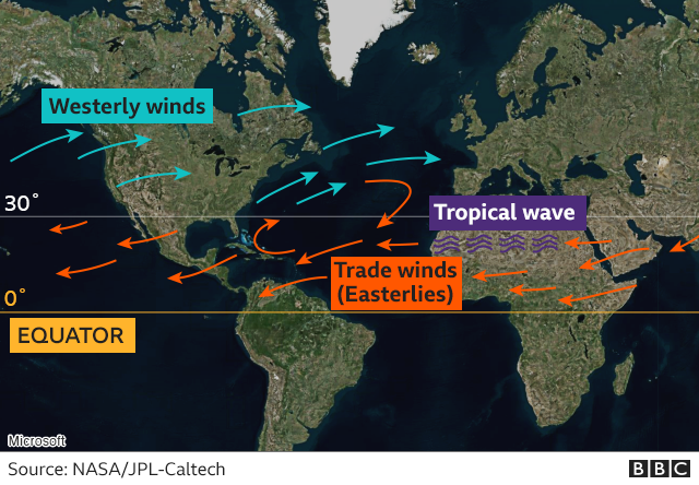 How the different global winds help form a hurricane