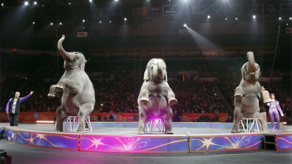 Ringling Bros and Barnum and Bailey Circus in Providence, Rhode Island, 1 May 2016