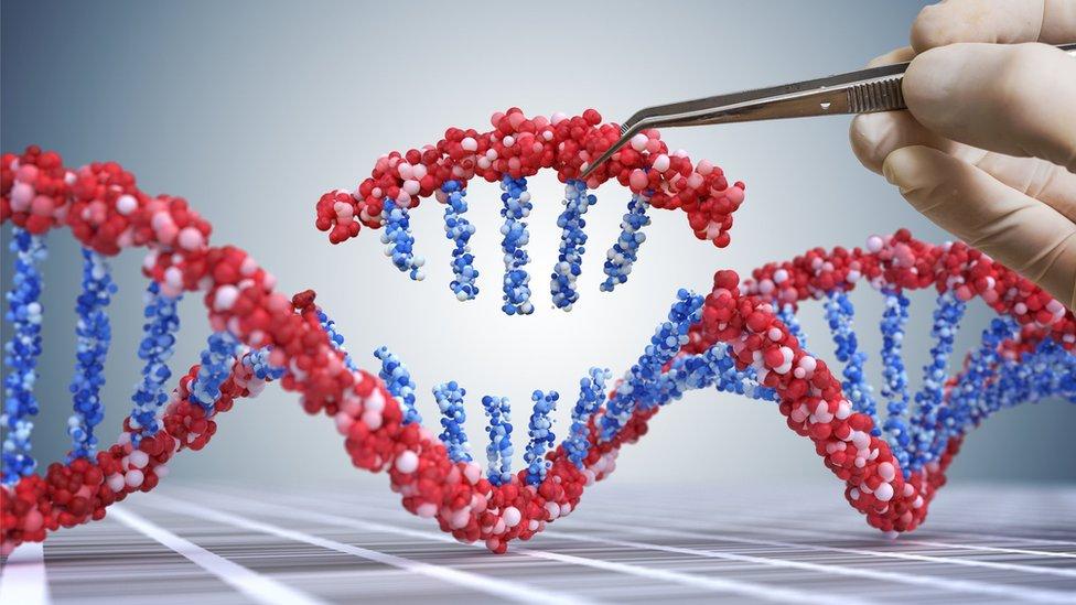 Alterando el ADN.