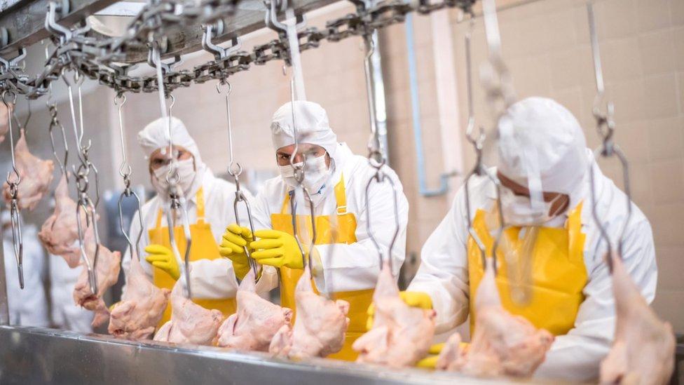 Fábrica de processamento de frango