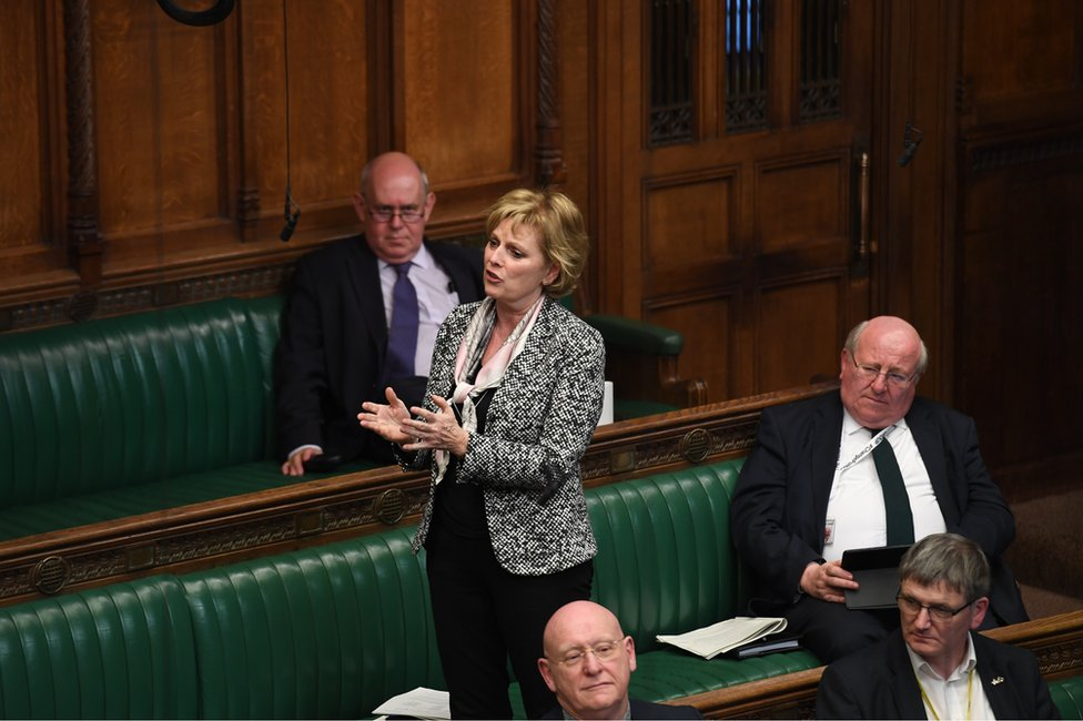 Anna Soubry speaks in the House of Commons