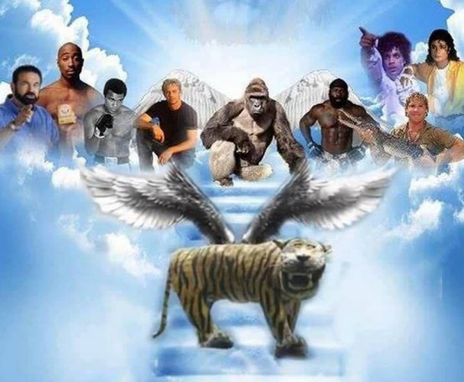 Composite image showing the tiger in heaven with other death famous figures