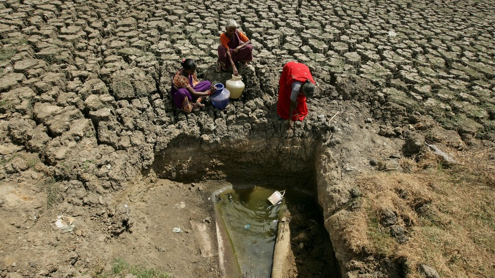 Women try to fetch water from an opening in a dried up lake in Chennai