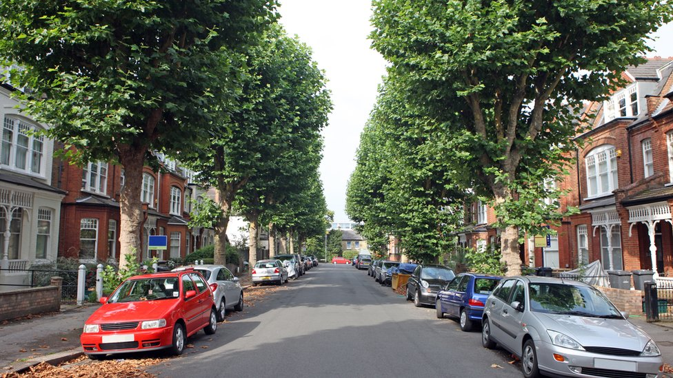 A tree-lined street in England