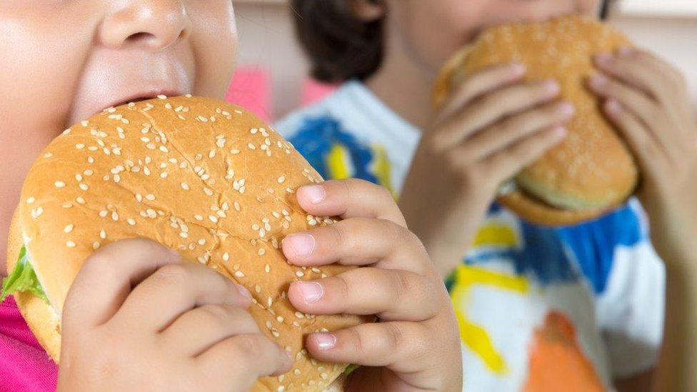 Schools alone cannot fix childhood obesity, says Ofsted boss